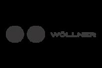 Utilização da cloud - Case: Wollner