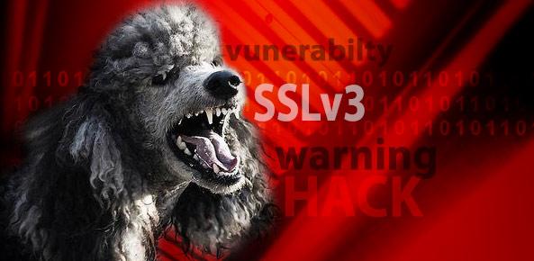 Vulnerabilidade no Protocolo SSLv3 (POODLE)