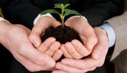 Quer ter uma startup? Conheça os 4 principais investimentos iniciais