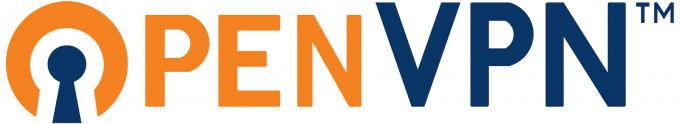 OpenVPN Linux Mint