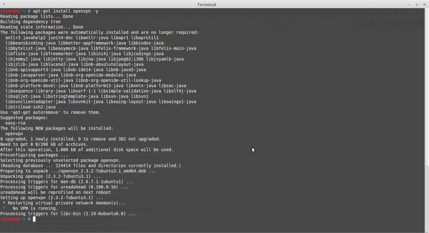 Instalar openvpn linux debian - passo 1
