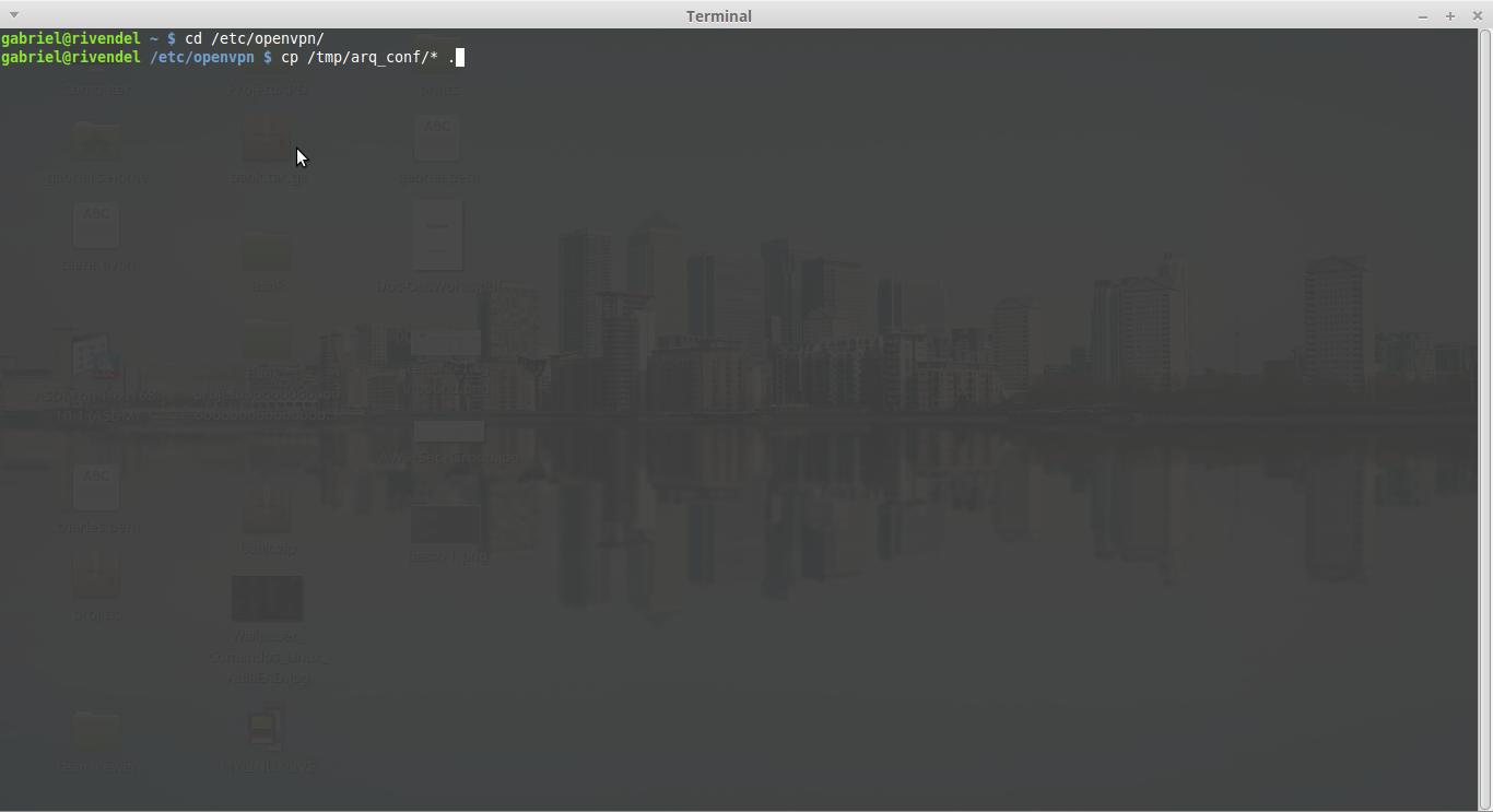 Configurar open vpn linux mint - passo 2